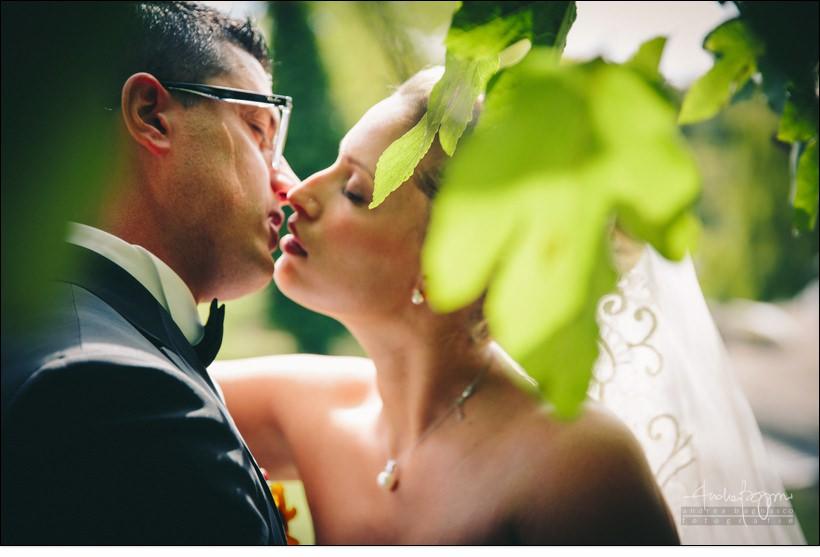 sposi matrimonio alberi dettaglio emozioni