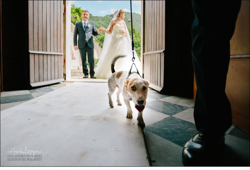 cane chiesa matrimonio country chic la ginestra
