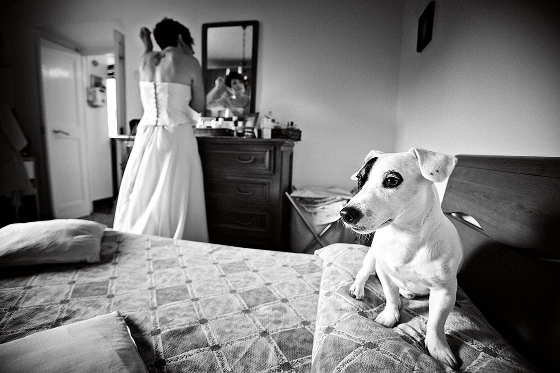 genoa best wedding photographers